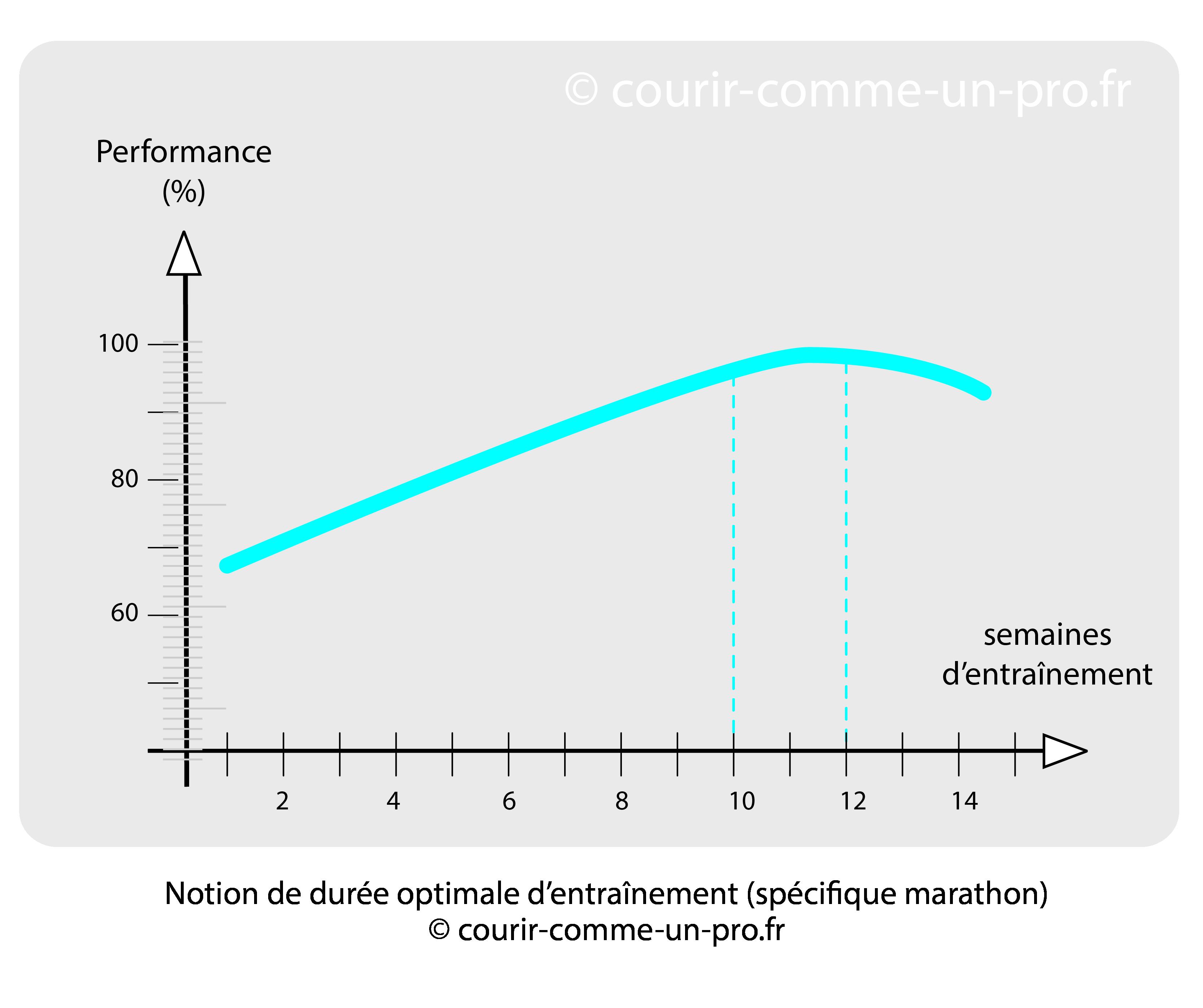 Courbe illustrant la durée optimale de l'entraînement marathon